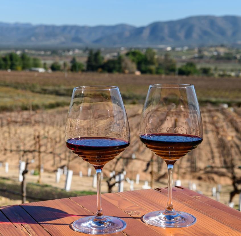 Valle de Guadalupe' Mexico's Wine Country