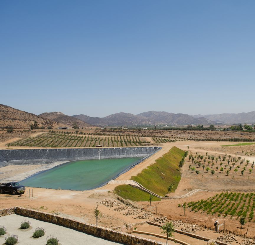 View of a vineyard at Valle de Guadalupe. Ensenada, Baja California, Mexico
