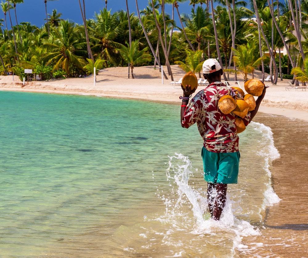 coconut saler DRj