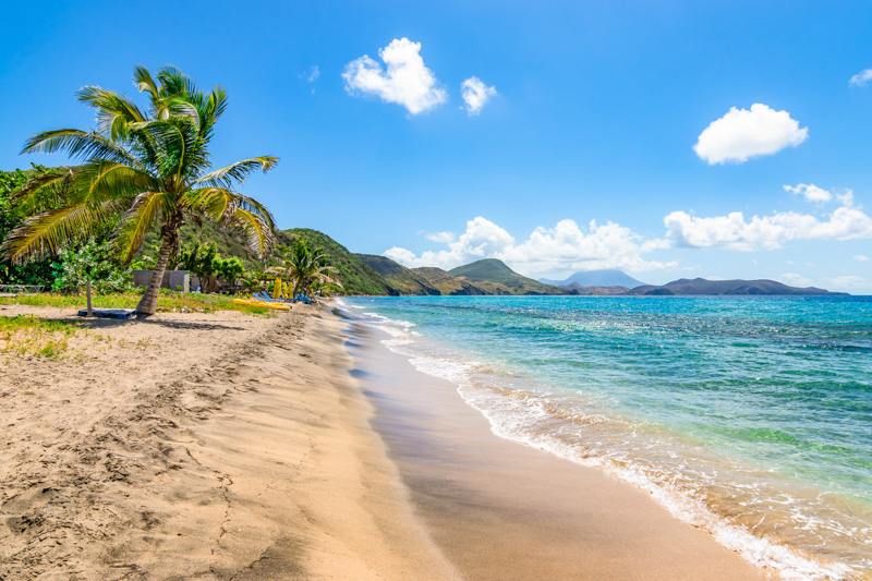 Beautiful beach with palm tree, St Kitts