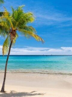 7 Best Jamaica Travel Destinations in 2021