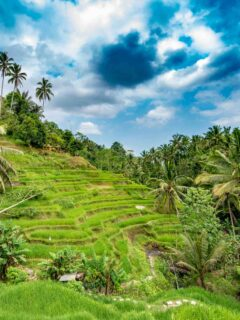 Bali Delays Reopening To International Tourists