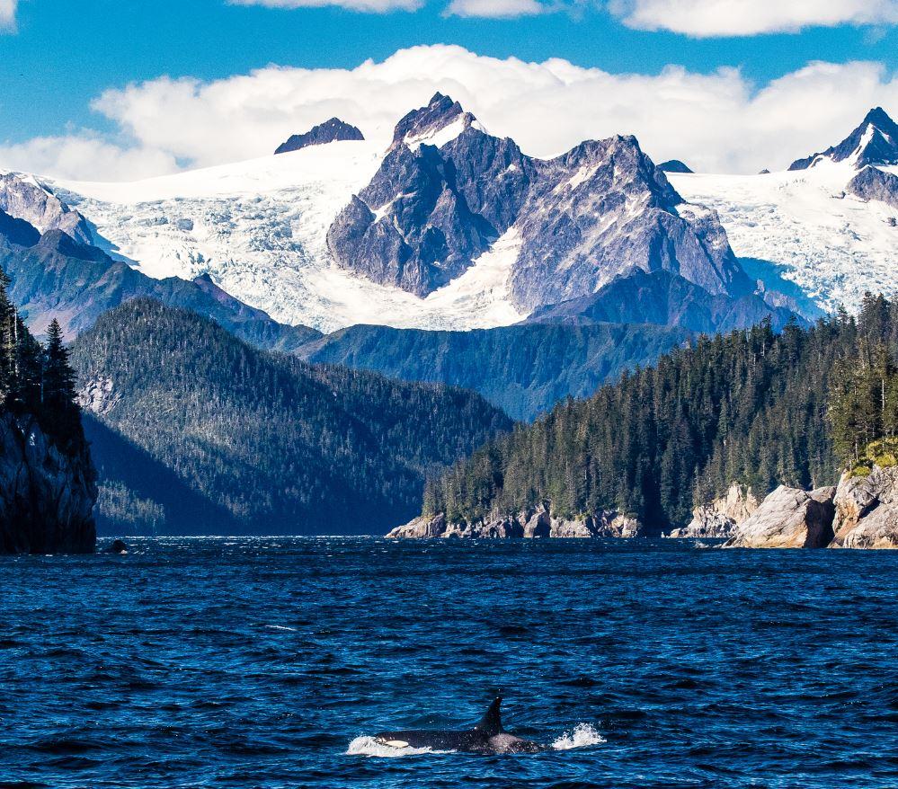 Kenai Fjords Alaska