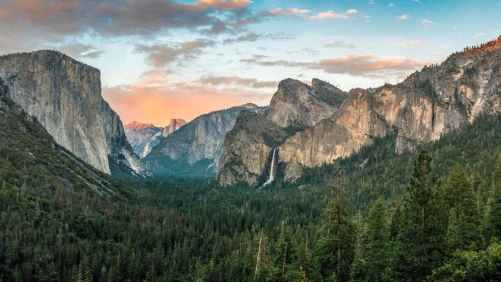 New York and California Reopening – What Travelers Should Know