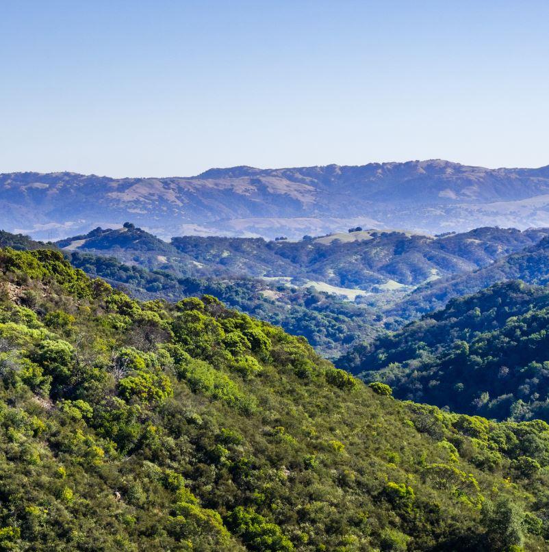 Santa Cruz mountains California