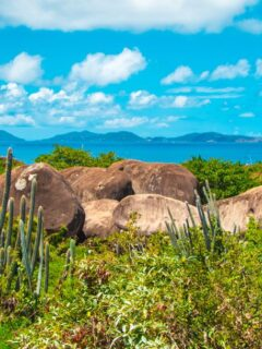 Several Different Caribbean Countries Update Their Travel Restrictions