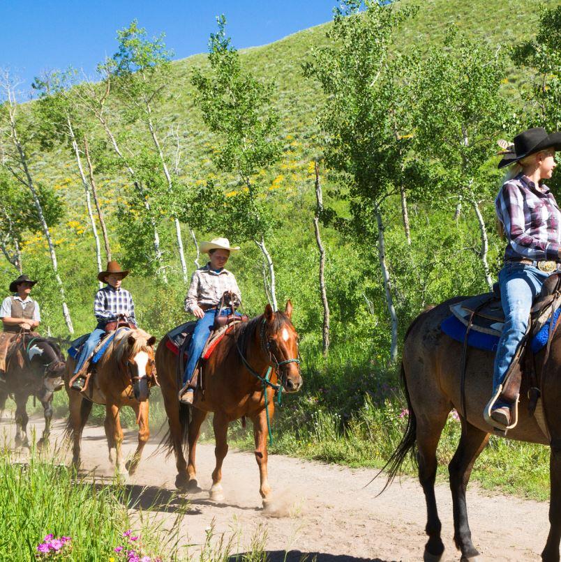horseback riding on trail