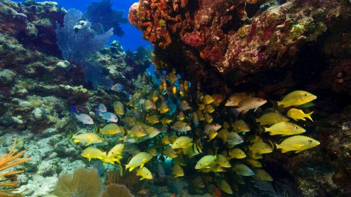 6 Secret Natural Wonders of the US