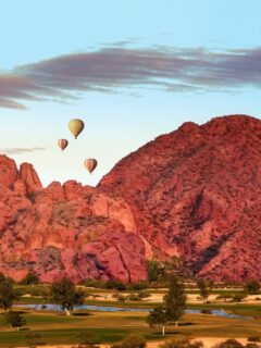 7 Reasons To Put Arizona in Your Travel Plans This Summer