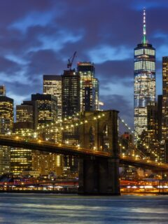 New York City: See It Like A Local