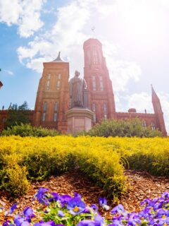 Visiting the Smithsonian Museums Post Covid: What You Need To Know