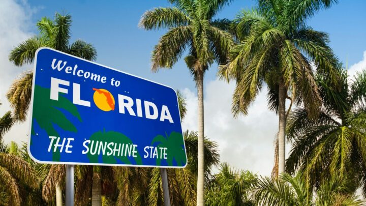 10 Unique Attractions To Visit in Florida this Fall