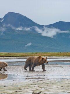 6 Lesser Known National Parks in Alaska