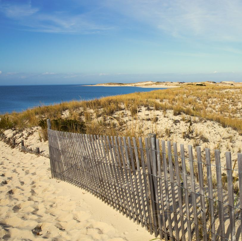 Lewes, Delaware beach dunes and sea