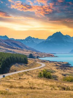 New Zealand Plans To Open Its Border Early 2022