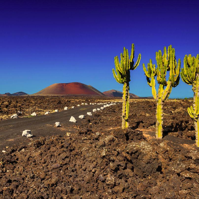 Timanfaya Lanzarote National Park
