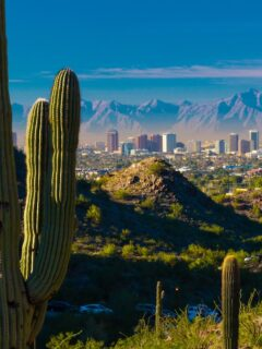 Top 10 Reasons To Visit Phoenix This Year