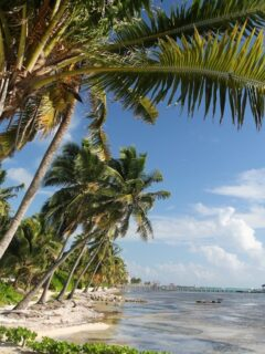 belize no longer recognizes vaccinated tourists - testing now required