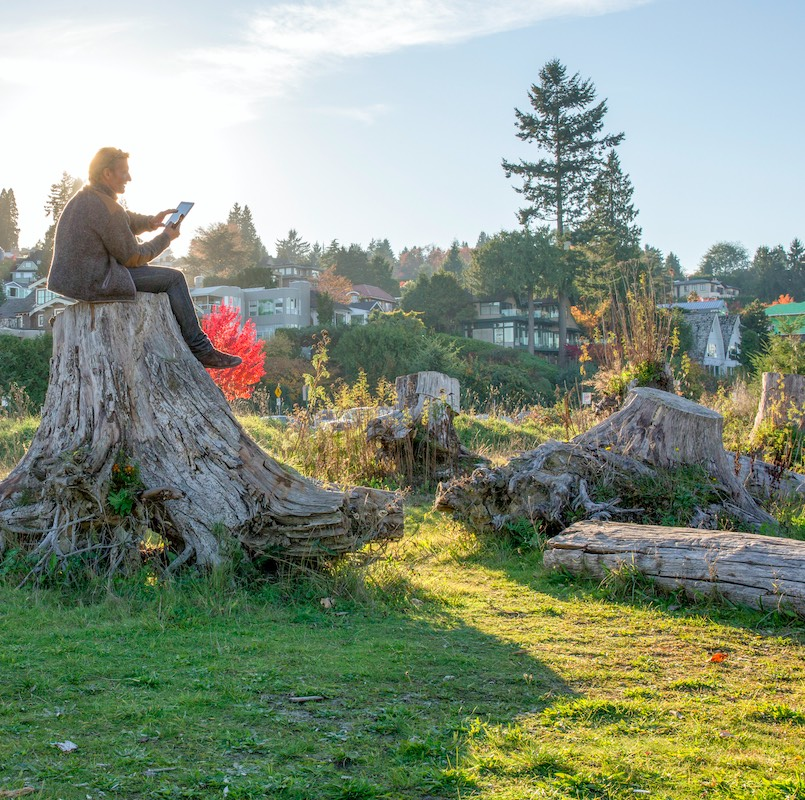 Man sits on top of stump and uses digital tablet stock photo