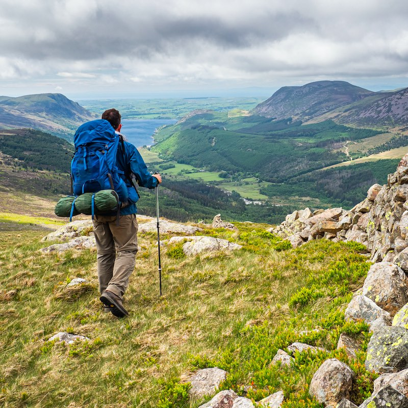 A hiker walks alongside a drystone wall stretching towards distant Buttermere on Warnscale / Buttermere Fell in Ennerdale, a valley in the Lake District, Cumrbia, England.