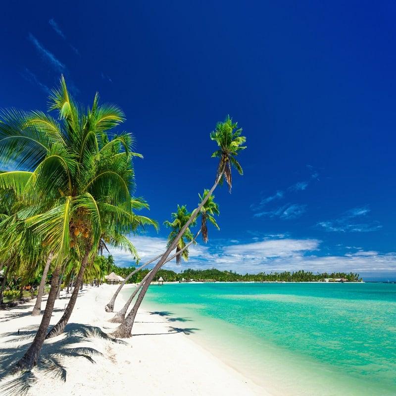 Plantation Island, Fiji,