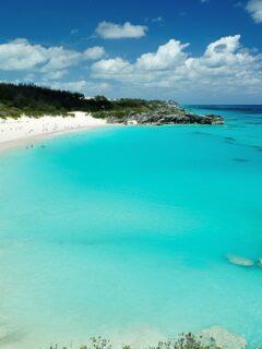 The 5 Best Beaches in Bermuda
