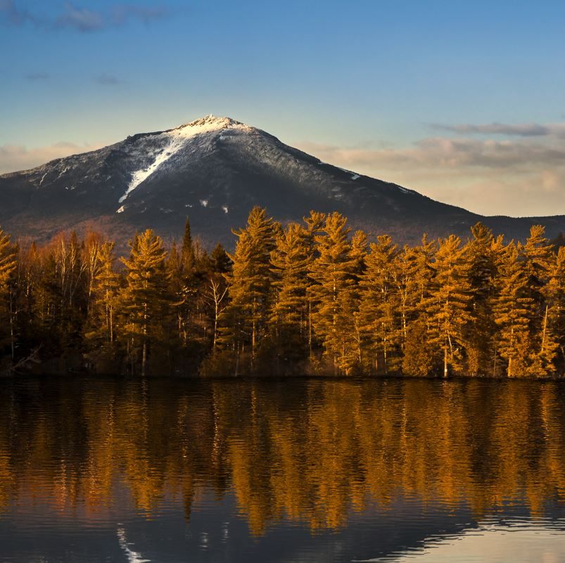 Whiteface Mountain and lake edged by trees