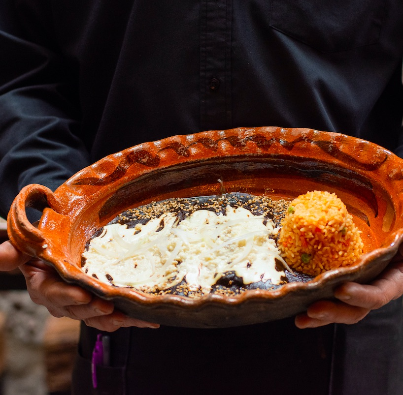 person holding a bowl of Traditional Mexican food Enchiladas with mole sauce