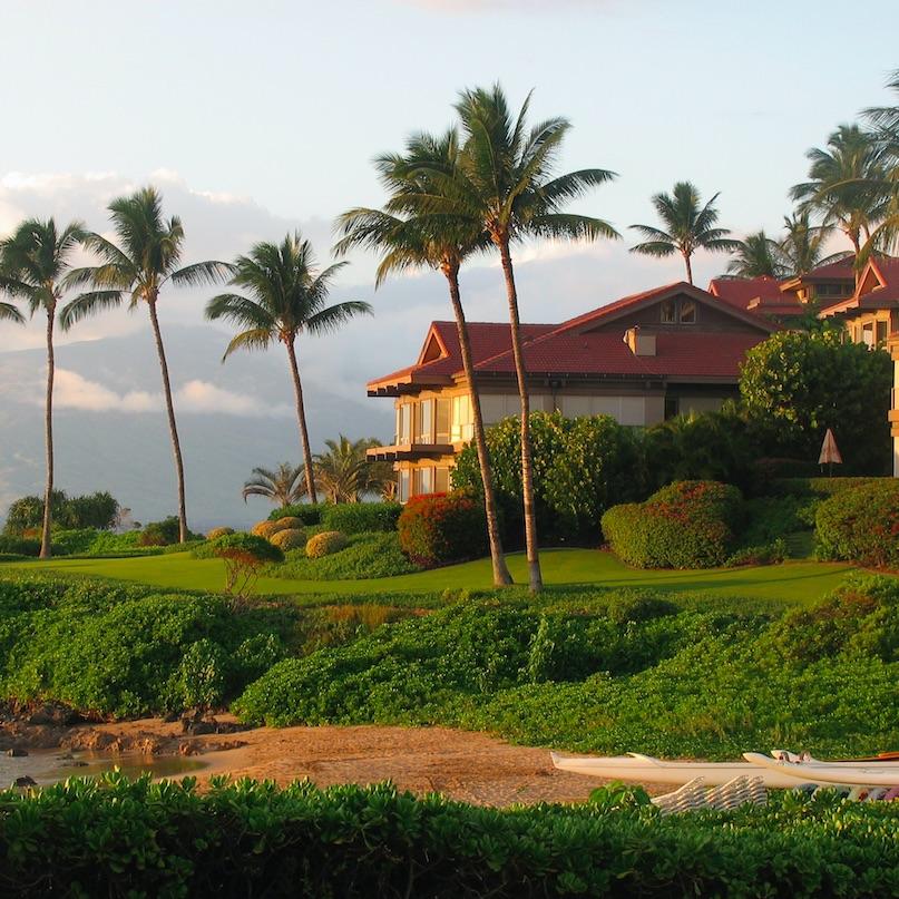 Palm trees line the coast of a Hawaiian vacation resort by a beach on the island Maui.
