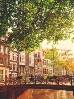 netherlands bans unvaccinated USA