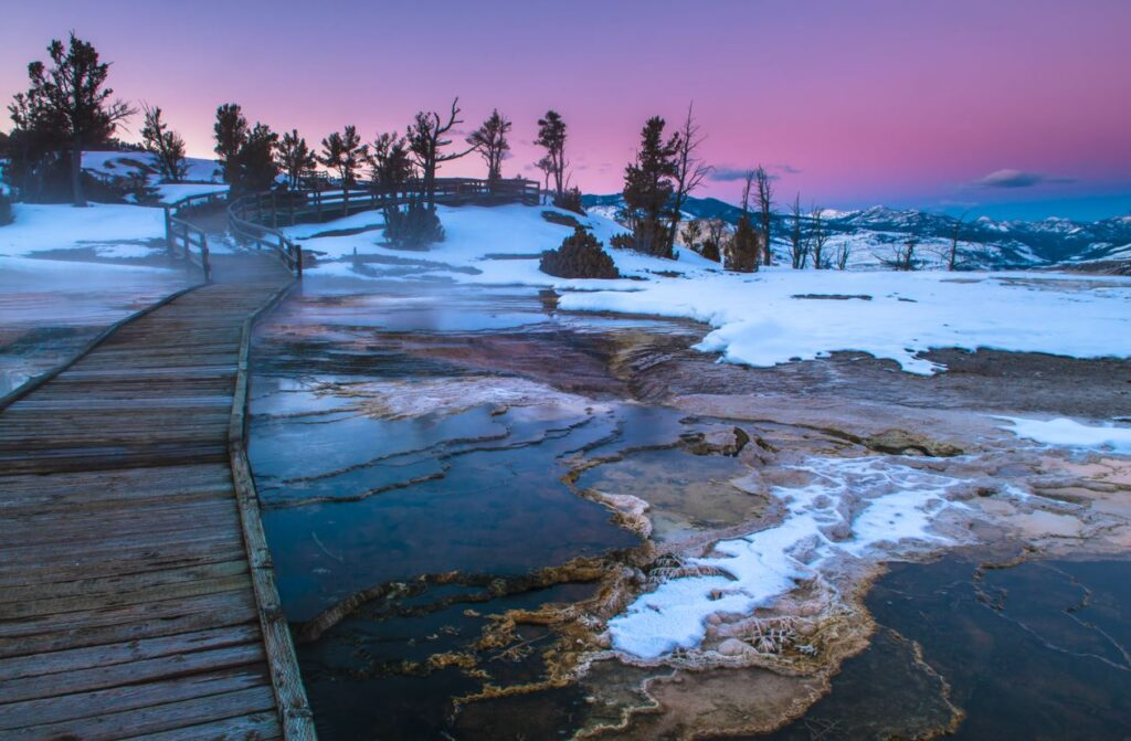Top 5 Tips For Visiting Yellowstone In The Winter