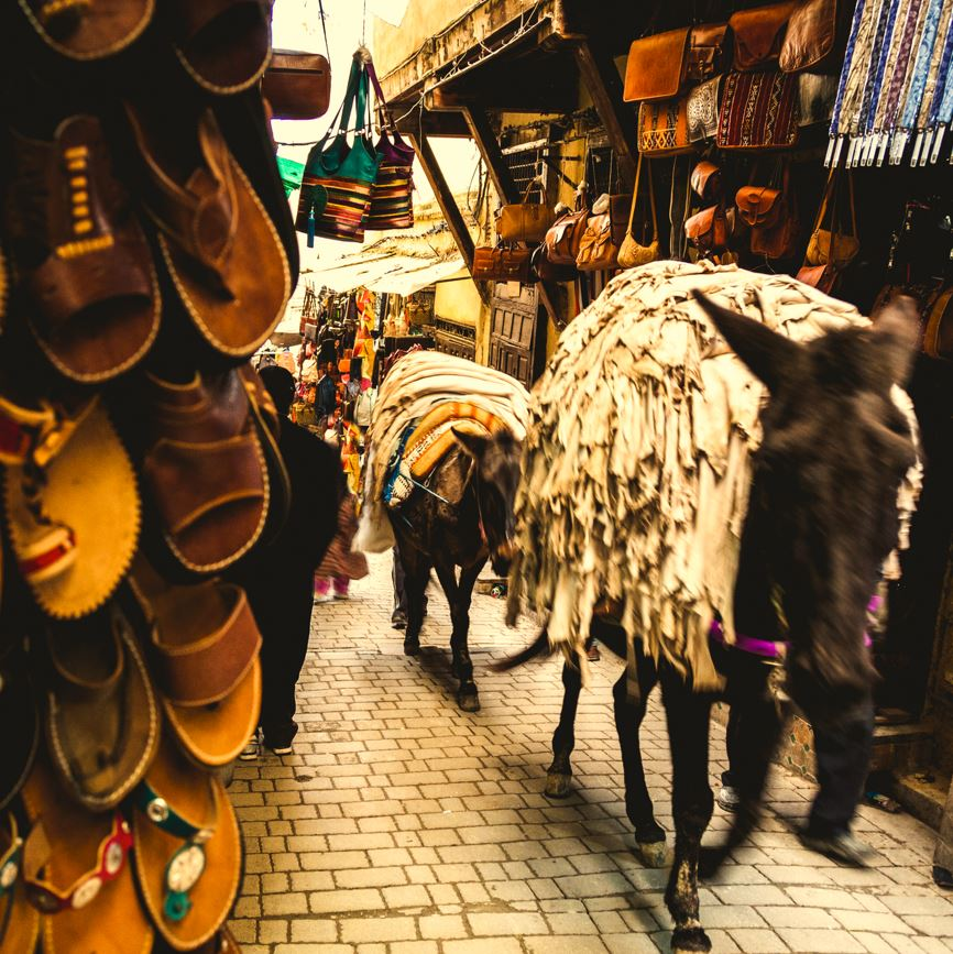 Fez medina and mules