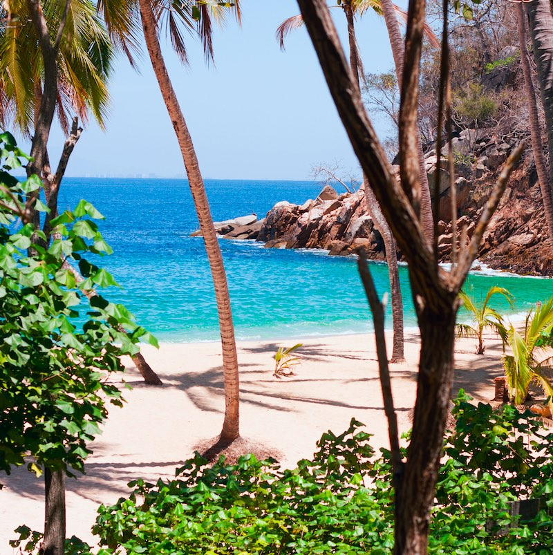 An afternoon view through the palm trees of Majahuitas Beach and across the Bay of Banderas, near Puerto Vallarta, Mexico