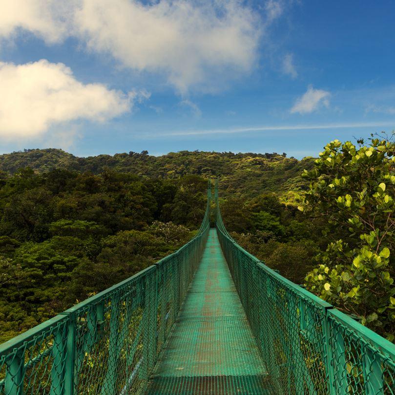 Monteverde tree canopy walkway