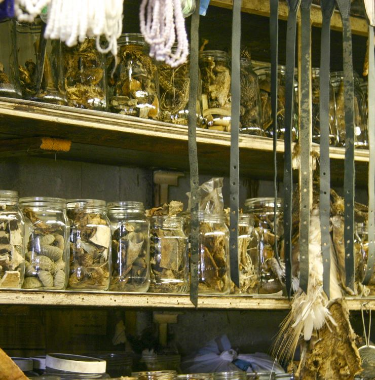 Stop By Nola Historical Voodoo Museum